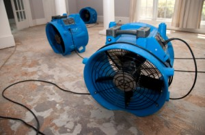 Water Damage Restoration | Water Removal - New Orleans LA